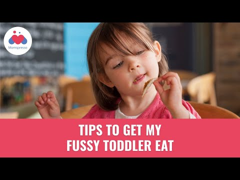 How To Get My Fussy Toddler To Eat