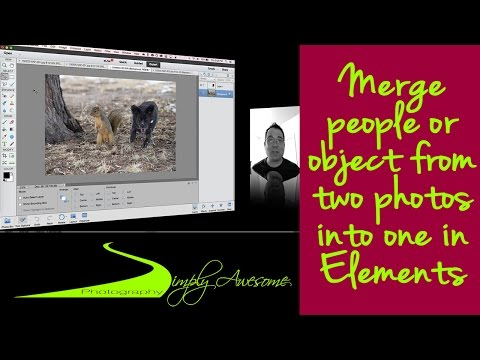 Learn Photoshop Elements - Merge people from two photos into one