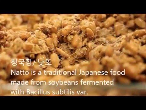 Natto Style 청국장 / Chung_Kook_Jang