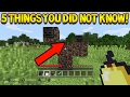 Minecraft Console Edition - 5 Cool Things You Didn't Know About Minecraft Console