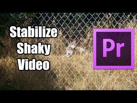 🎞️ Stabilize Shaky Videos Adobe Premiere