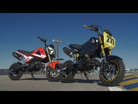 Honda Grom Roadracing With the UMRA | ON TWO WHEELS