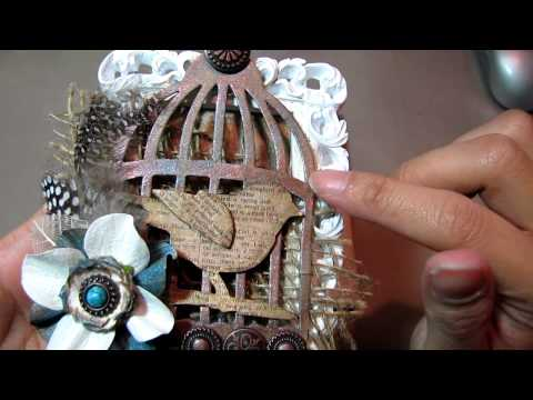 Day 13 of 31 days Challenge - Birdcage Project