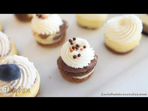 Bite Size Cheesecakes at Dandelion Cheesecakes