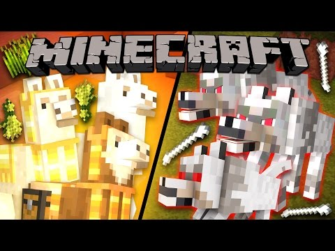 Why Llamas Hate Wolves - Minecraft