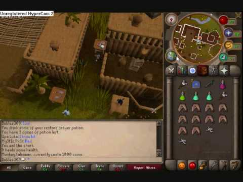 Guide on how to get the best Monkey GreeGree on Runescape!