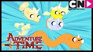 Adventure Time | Jake