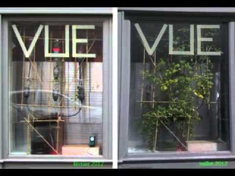 Creative vertical window garden