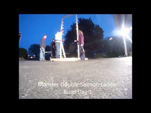 Double Salmon Ladder Build