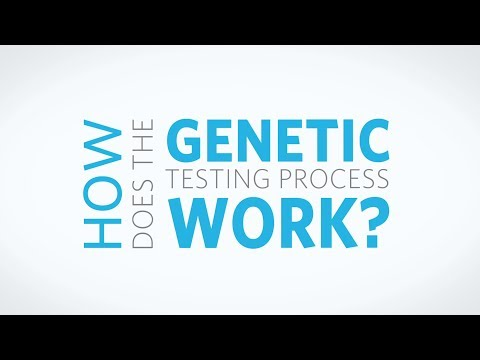 How Does The Genetic Testing Process Work?