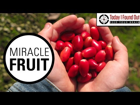 The Curious Case of the Fruit That Transforms Sour to Sweet