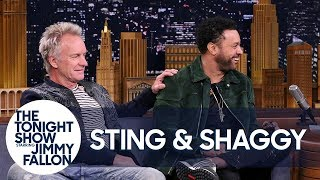 "Sting Met Shaggy After He Wandered Onstage During ""Roxanne"""