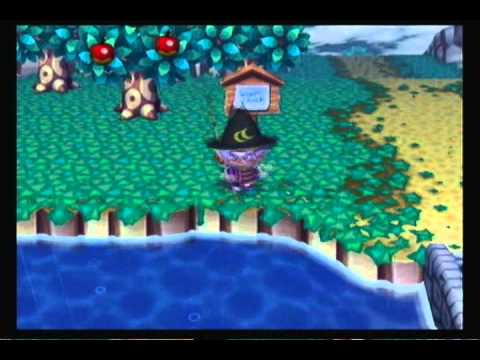 Let's Play Animal Crossing City Folk - #56 The Point