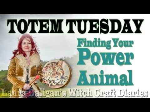 Totem Tuesday - Finding Your Power Animal