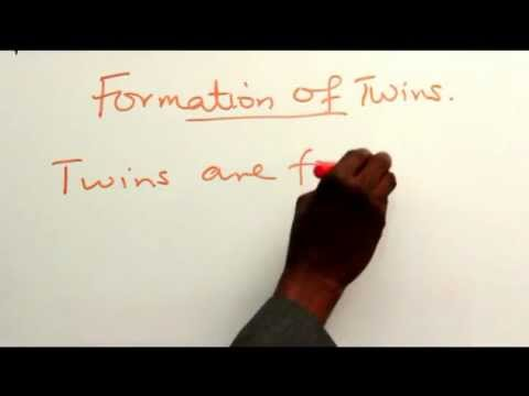 FORMATION OF TWINS PART 1