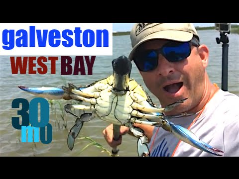 Redfish & Trout fishing Galveston Texas- topwater & suspension lures