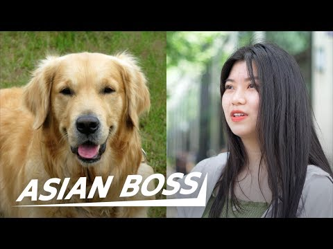 Xxx Mp4 Do All Chinese Really Eat Dog Meat Street Interview ASIAN BOSS 3gp Sex