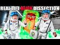 BOX FORT Spaceship Real Life Giant ALIEN Dissection SLIME Treasure X Aliens Challenge