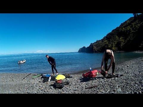 Crayfish Diving NZ