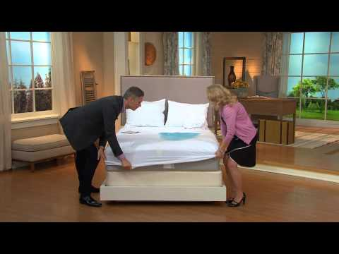Protect-A-Bed CK Waterproof Cotton Terry Mattress Protector with Alberti Popaj