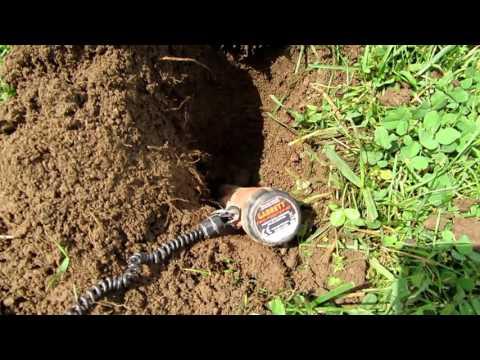 Metal Detecting West Virginia