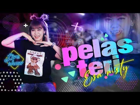 Download Lagu Esa Risty Pelas Teri Mp3
