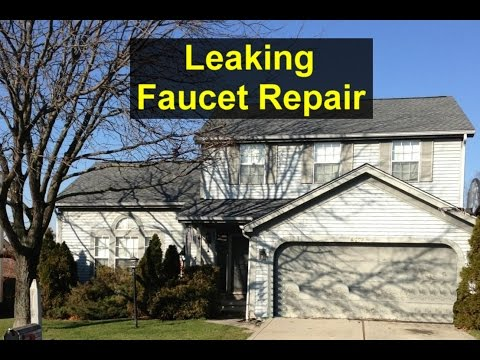 How to repair a leaking faucet, Delta style. - VOTD