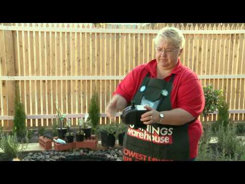 How To Install A Pond Pump - DIY At Bunnings