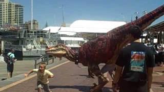 Australian Dinosaur runs rampant