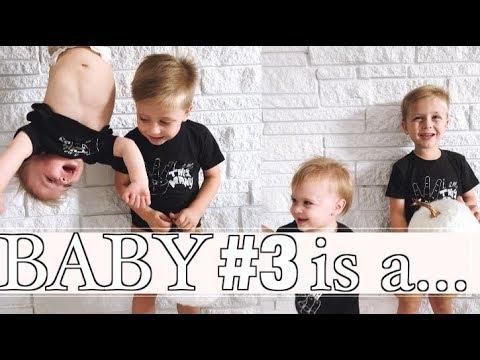 Our Surprise Pregnancy Gender Reveal! | Baby #3 | steffiethischapter