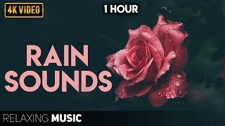 Relaxing Music with Rain Sounds | Calm Piano Music, Sleep Music, Meditation Music, Pregnancy Music