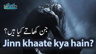 Jinn kya khaate hain? ┇ Jinn aur Jaado ┇ LearnQuran.net by IslamSearch