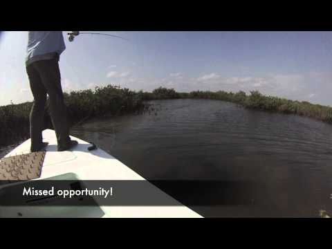 Texas Fly Fishing for Saltwater Red fish in Port O'Connor