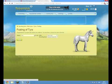 Howrse-How to get unicorn foals! (Part 2)