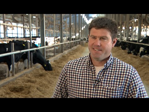 Early Detection of Subclinical Mastitis Pays