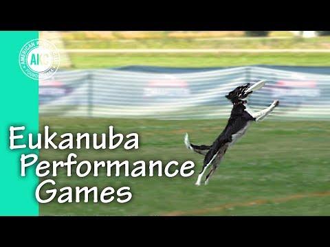 Eukanuba Performance Games