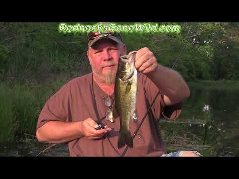 Bass Fishing Again