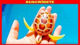 Unboxing juguetes tortuga robotica de robofish  robo turtle toy  video para niños de juguetes