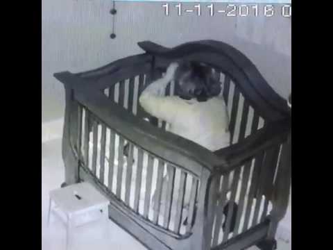 Grandma Tries to Put Baby Into Crib and Falls