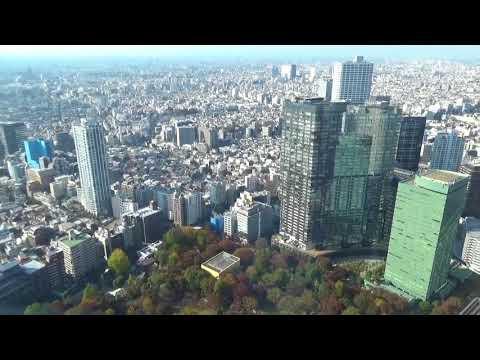 Tokyo Tochomae Views