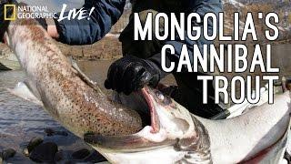 Monster Fish, Part 2: Mongolia