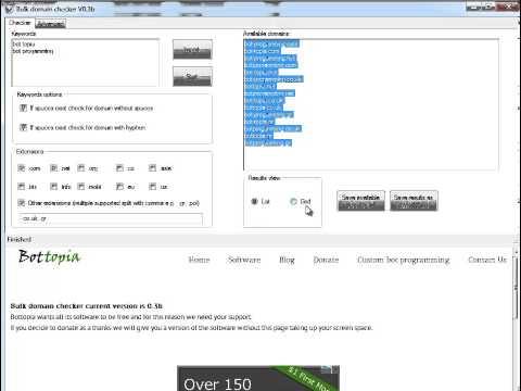 How to use Bottopias bulk domain checker