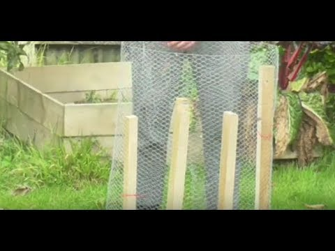 Tree Cage How To Protect Your Fruit Trees From Cats , Deer And Squirrels