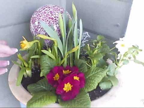 How to Plant a Meaningful Flower Pot for your Porch