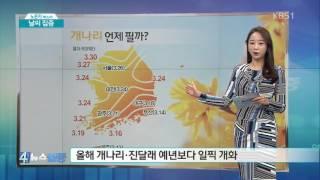 [날씨 집중] 내일 새벽까지 전국 비·눈