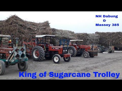 King of Sugarcane Trolley NH Dabang 85 & Massey 385 in Huda Sugar Mill