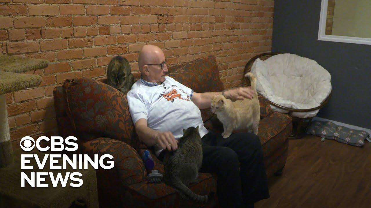 Man who naps with cats raises thousands for a pet sanctuary