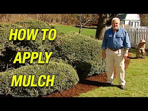 How to Apply Mulch | Why You Should Mulch