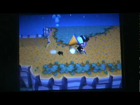 Animal Crossing: City Folk - Epic Tarantula Chase