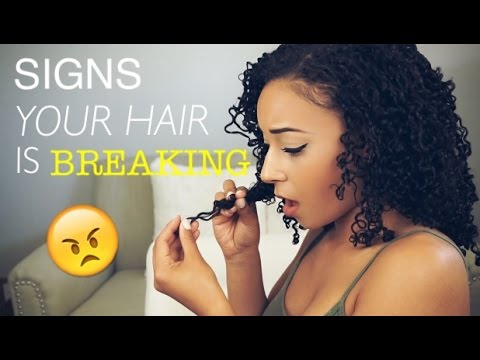 Signs Your Hair Is Breaking & How to DEAL with Breakage!